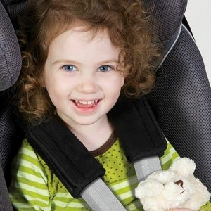 Diono Soft Wraps Car Seat